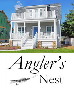 Open House on Lewes Beach Today - September 5, 2015